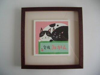 夫婦_猫の画像