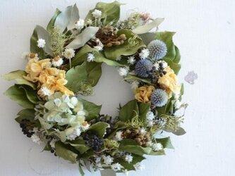 紫陽花 チューリップ ルリ玉アザミ wreathの画像