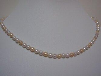 淡水真珠のネックレスの画像