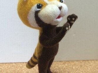 羊毛フェルト「レッサーパンダ」の画像