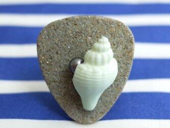 海辺のリングAの画像