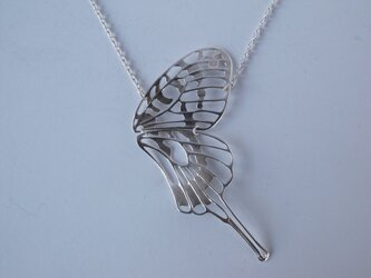 dlicate air NL swallowtail(half)の画像