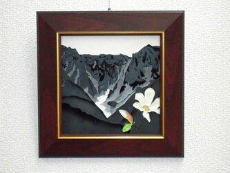 なつかしの山・思い出の花シリーズ「谷川岳、一の倉沢・コブシ」の画像