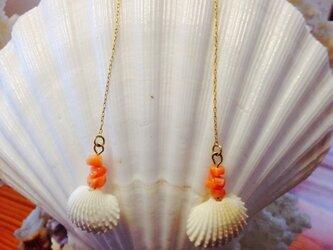 ホワイトシェルと珊瑚のアメリカンピアスの画像