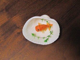 貝がら ミニチュア 蘭鋳一匹の画像