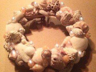 貝殻のリース <Shell Wreath>の画像
