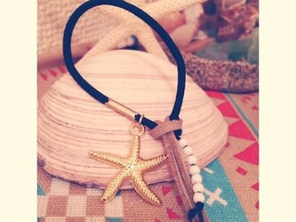 starfish simple navyの画像
