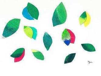 葉っぱの画像