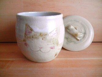 猫つぼ・白の画像