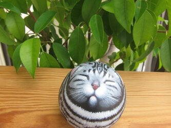 アメショーの石猫(まどろみ)の画像