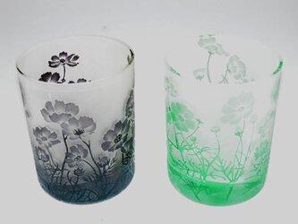 ペアコスモスグラスの画像