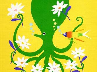 Octopus Gardenの画像