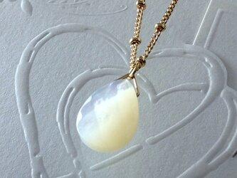 ホワイトシェルのネックレスの画像