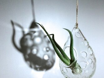-Bubble Drop- for Air plants flower vaseの画像