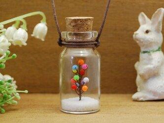 コルク瓶の中のリトルキャンディーツリーの画像