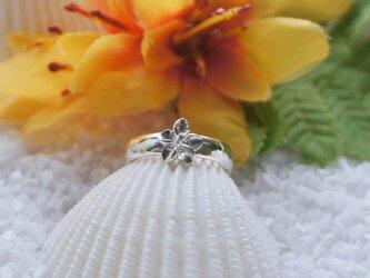 ハワイアンジュエリートゥ・ピンキーリング(柄なし・Silver)の画像