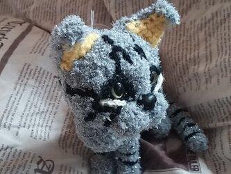 【気分屋編み雑貨】アメショー猫の画像