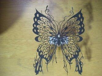 切り絵蝶の標本(Animae dimidium meae)の画像