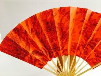 京扇子 プロテアの画像
