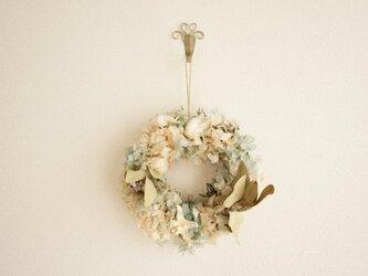 紫陽花 貝 wreathの画像