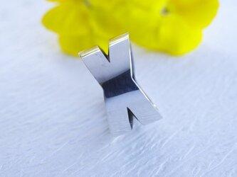 X ringの画像