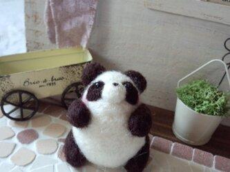 ぷっくりパンダ(A)の画像