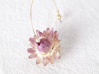 お花のピアス AWA MURASAKIの画像