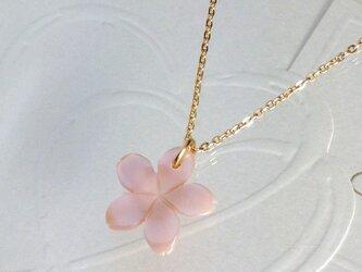 お花のピンクシェルネックレスの画像