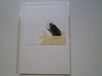 ハムスターの冬の巣作り(ポストカード)の画像