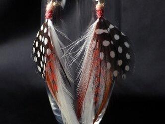 羽根のピアス オリジナル・フェザーピアス SV925 の画像