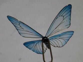 蝶の簪 モルフォチョウ(再販)の画像