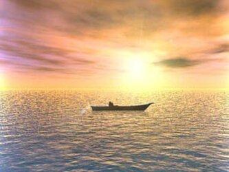 sunset loveの画像