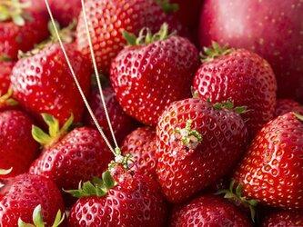 『野菜モチーフのアクセサリー/ピアス』 fraiseの画像