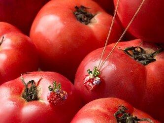 『野菜モチーフのアクセサリー/ネックレス 』 tomatoの画像