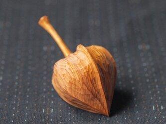 木のほおずき (中)イチイ の画像