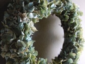 夏の紫陽花リースの画像