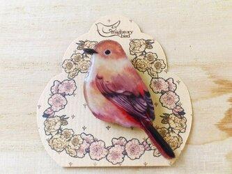 小鳥のブローチの画像