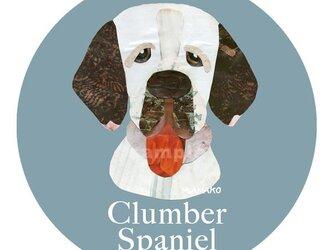 クランバー スパニエル《犬種名ステッカー/中型犬》の画像