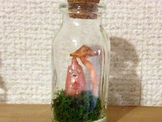 うちぅじんの小瓶標本オブジェ(きのこ)の画像