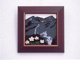 なつかしの山・思い出の花シリーズ「大日岳・チングルマ」の画像