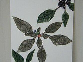 葉書〈ブラックパール-4〉の画像