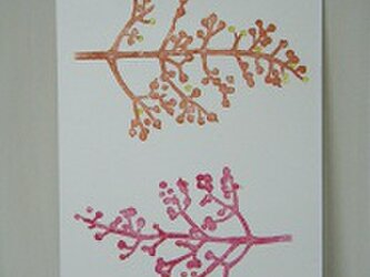 葉書〈サンゴジュ-1〉の画像