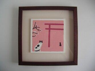 神社の猫の画像