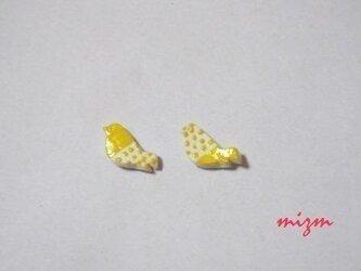 レモン色に染まる鳥さんの画像