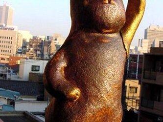 陶猫★ゴールデンアームの画像