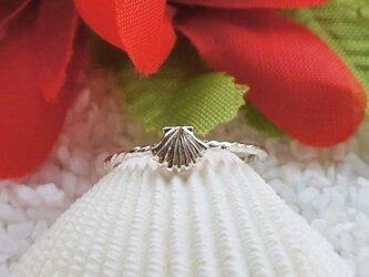 ハワイアンシェルリング(Silver)の画像