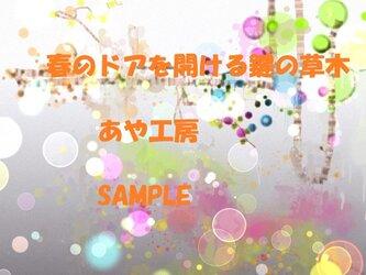 2014.8 CG画集17(POSTCARD)の画像