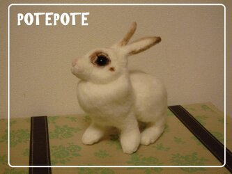 【POTEPOTE】白ウサギ(オーダー分)の画像