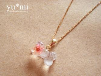 小さなお花*のリボンネックレスの画像