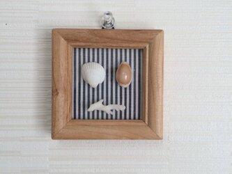 貝のminiフレームの画像